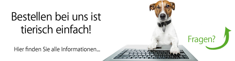 e-Zigarette bestellen bei iSmokeSmart.de